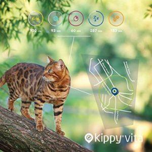 Kippy Vita 3 300x300 - NEU: GPS-Geräte für Katzen im Test & Vergleich