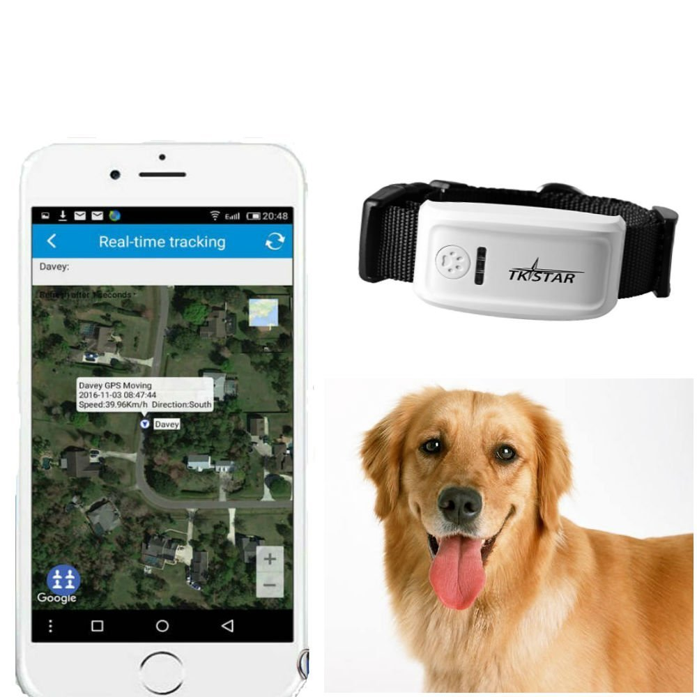 gps sender tracker f r hunde im vergleich testsieger. Black Bedroom Furniture Sets. Home Design Ideas